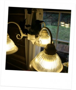 Cabin light fixture.