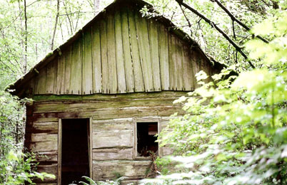 Post image for Heritage Log Cabin Restoration in 5 Steps