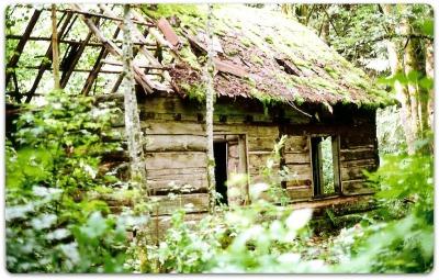Heritage Log Cabin Restoration In 5 Steps Modern