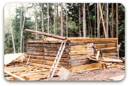 replace logs on log home