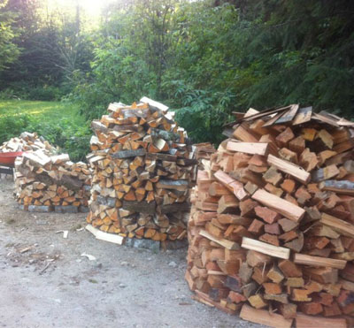 Post image for How We Built a Holz Hausen (Beehive Wood Pile)