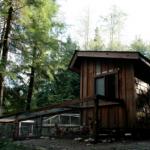chicken-housing-3