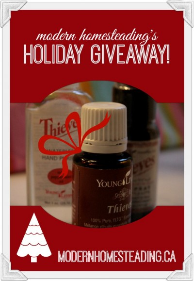 Modern Homesteading 2013 Holiday Giveaway… with a Twist