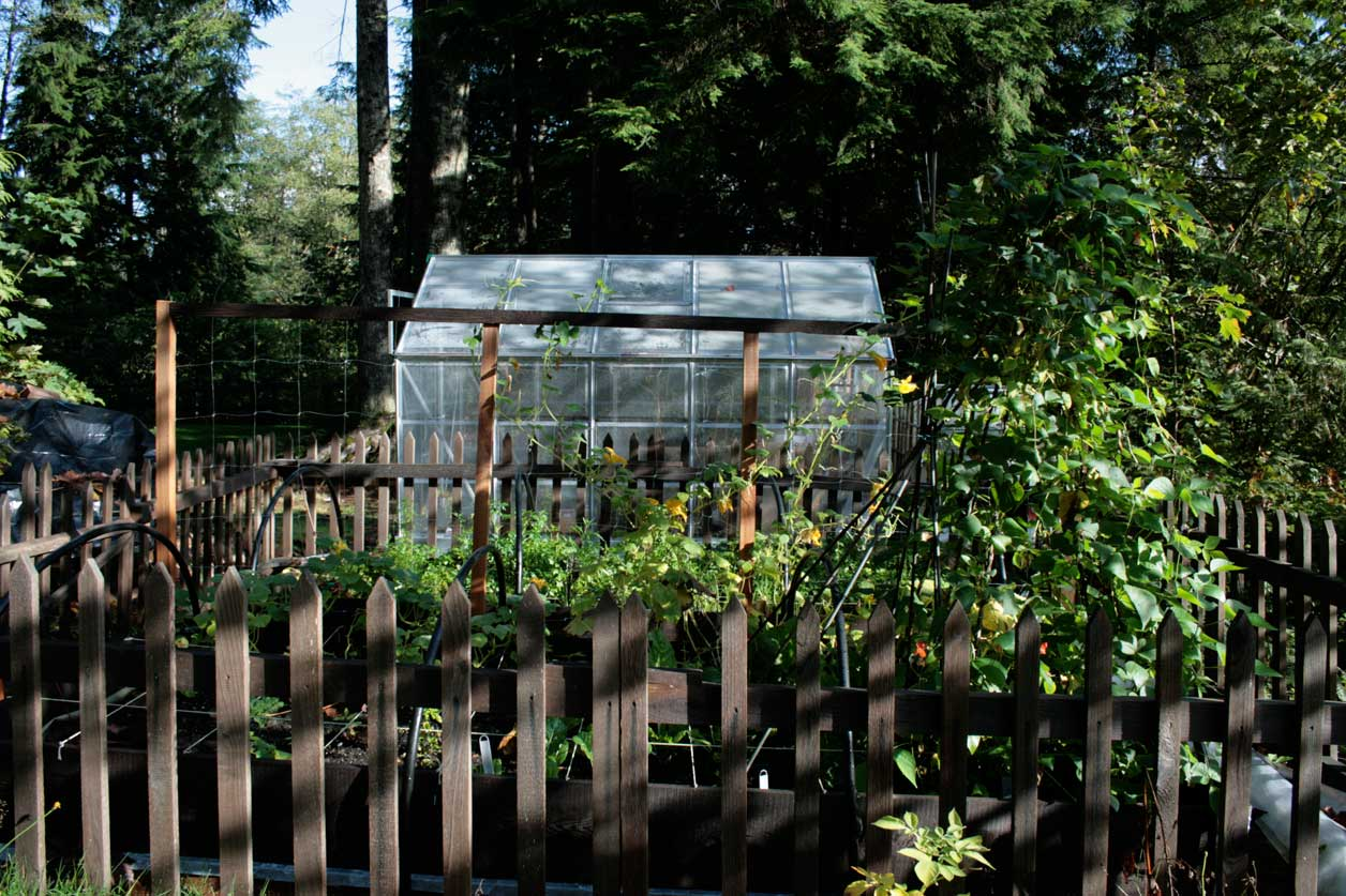 What Not to Do – Vegetable Gardening Tips from Real Gardeners